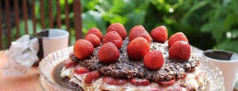 YourfamilyKitchen_Strawberry_Oat_Cake_PanorameIMG_1513_large